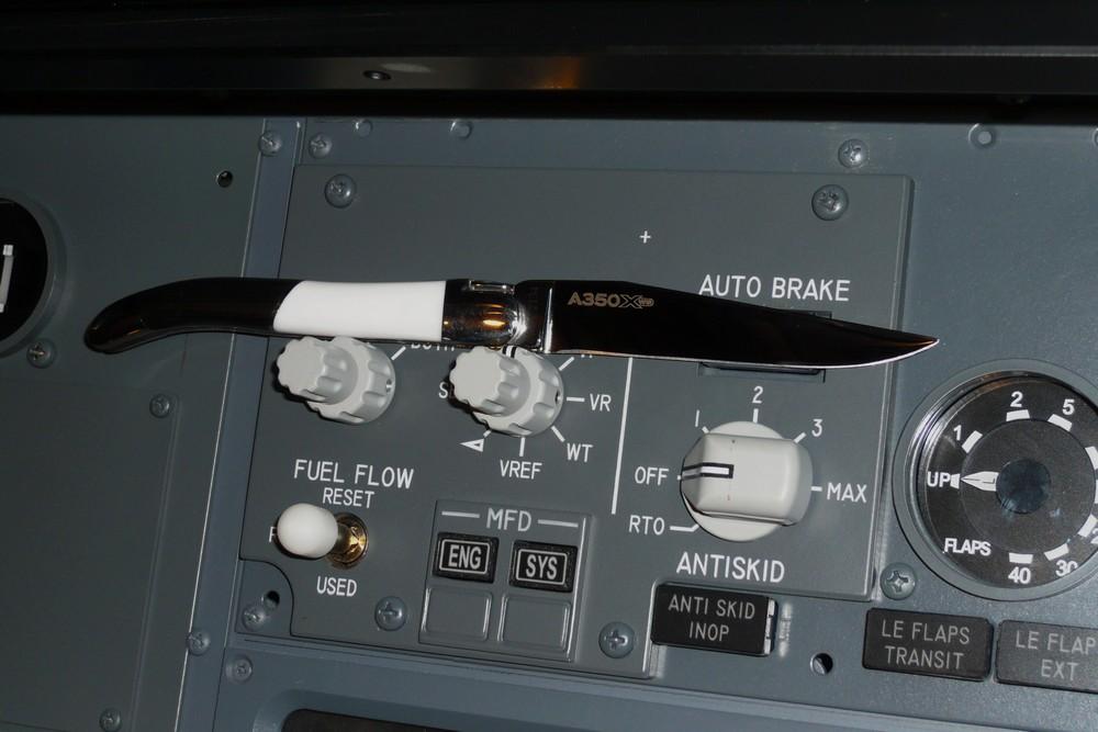 AIRBUS A350 (2)