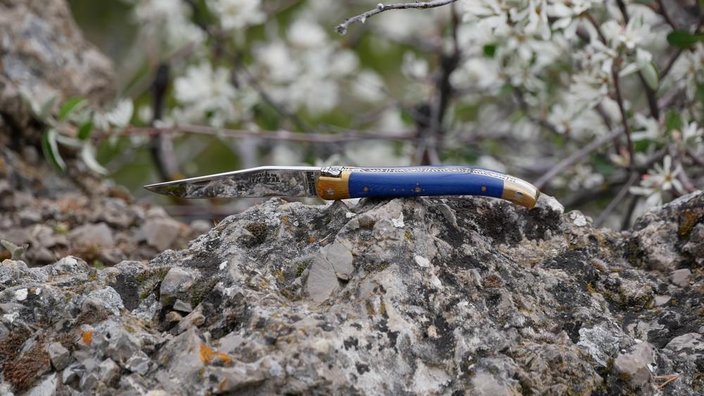 p1000907-laguiole-bleu